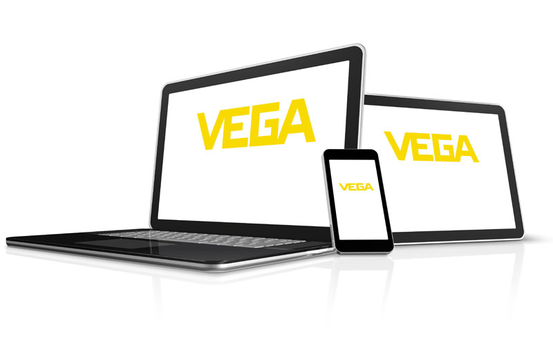 Join our team at the VEGA Americas career site.